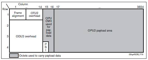 Extended OPU2 payload used for mapping 10 GigE LAN PHY